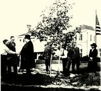 <b>Tree planting in Dalton, 1911</b>